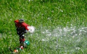 sprinkler system