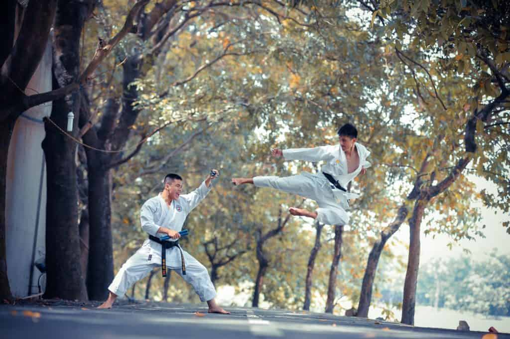 self-growth through martial arts